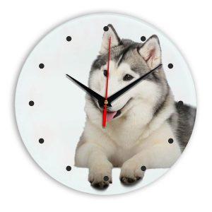 dogs-clock-101