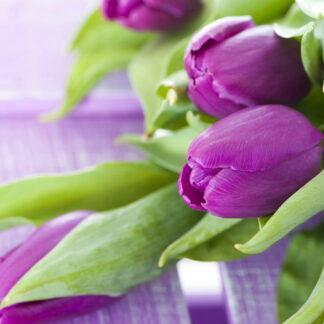 Фото на стекле «Весенний букет»