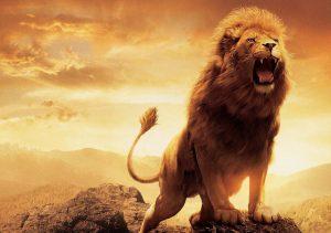 """Фото на стекле """"Король зверей"""""""